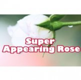 SUPER APPEARING ROSE (White)