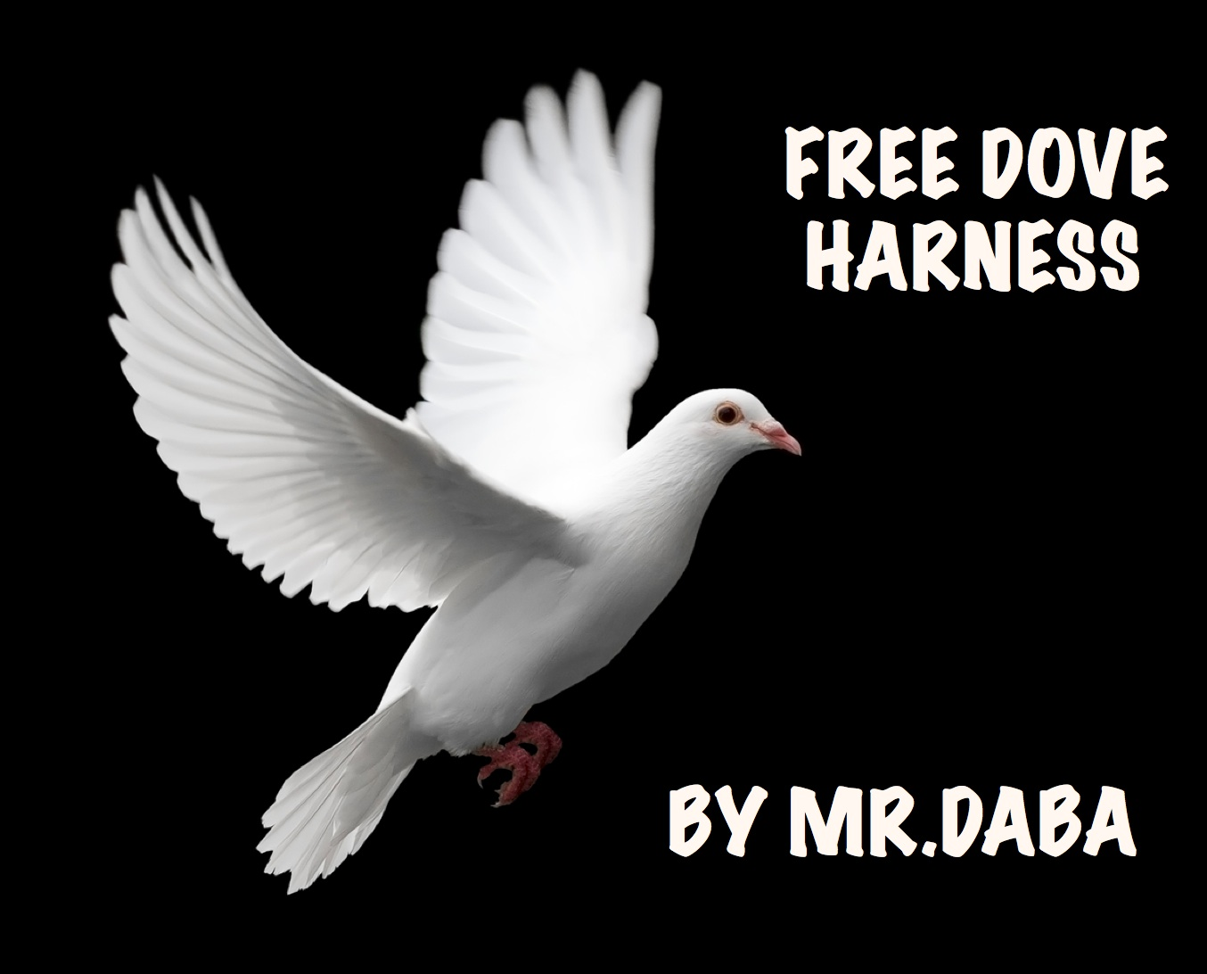 FREE DOVE HARNESS - Click Image to Close